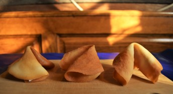 rockos-ml-fortune-cookie-3